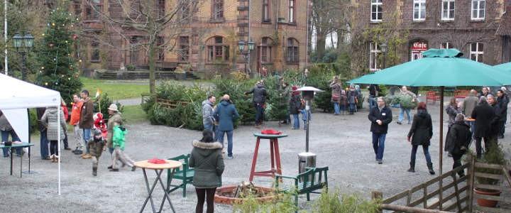KUNDEN-EVENT | Weihnachtsbaumschlagen