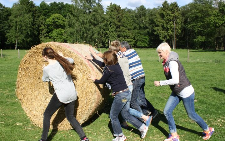 Teambuilding in a beautiful and rural environment far away from the daily life.