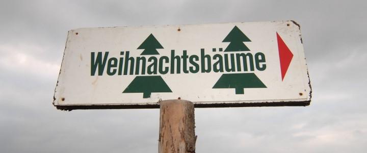 WEIHNACHTSFEIERN | Weihnachtsbaumschlagen & Glühwein