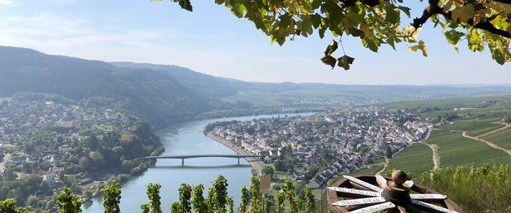 Tagung Meeting Weinberg Mosel Rhein_TAKE A LOOK_10