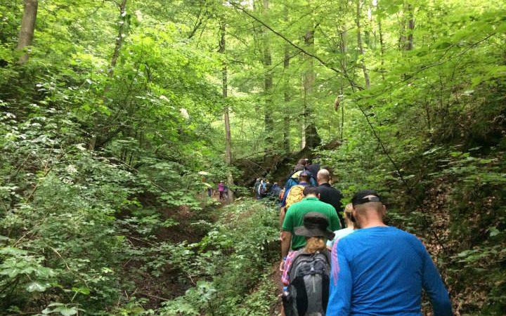 Wandern, Teambuilding in der Natur, Firmenwandertag, Naturerlebnis, Erlebnis, Kommunikation, Gemeinschaft, Achtsamkeit, Outdoor