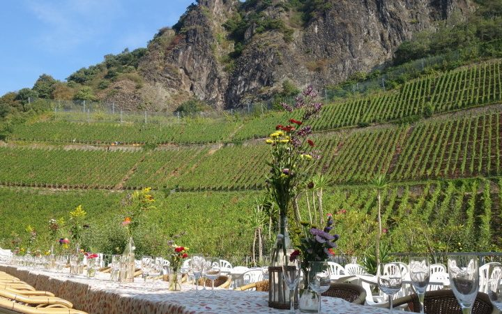 Verbringen Sie Ihren Firmen-Familientag auf einem idyllischen Weingut.